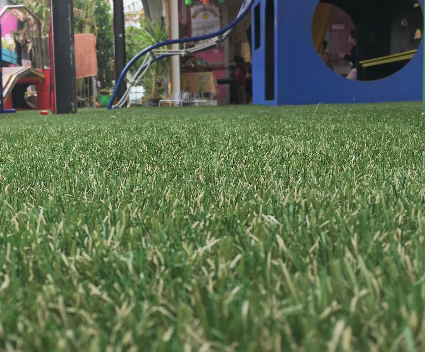 Wollongong synthetic grass